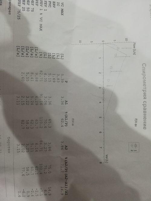 Результаты спирометрии - фото №1