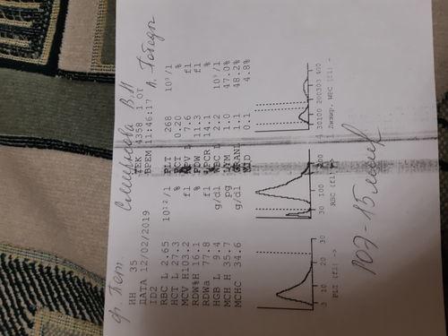 Пониженный гемоглобин у женщины в 70 лет, при этом железо, фолиевпя кислота и В12 в норме - фото №1