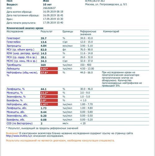 Общий анализ крови - фото №1