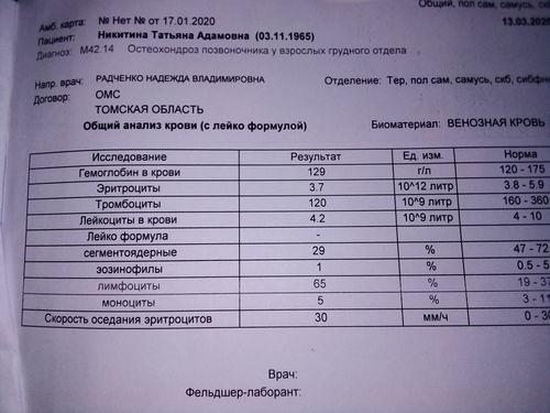 Количество тромбоцитов ниже нормы - фото №1